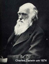 Rekombination Genetik Wikipedia